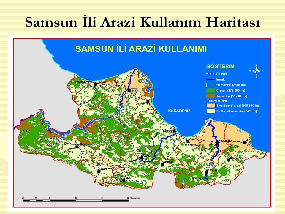 Samsun İli Arazi Kullanım Haritası