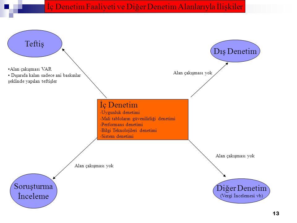 İç Denetim Faaliyeti ve Diğer Denetim Alanlarıyla İlişkiler