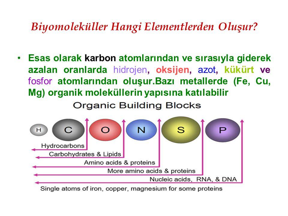 Biyomoleküller Hangi Elementlerden Oluşur