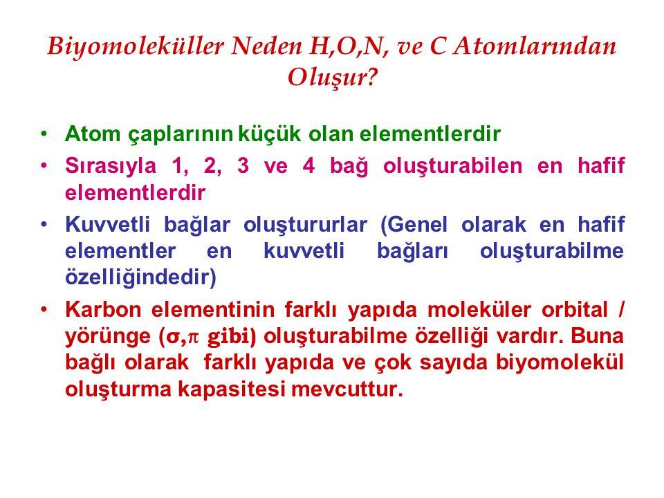 Biyomoleküller Neden H,O,N, ve C Atomlarından Oluşur