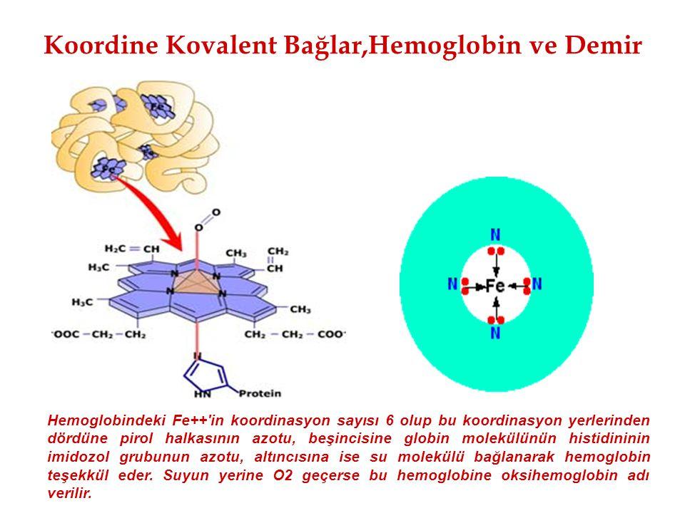 Koordine Kovalent Bağlar,Hemoglobin ve Demir