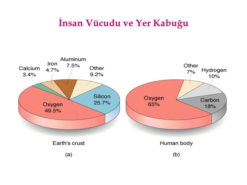 İnsan Vücudu ve Yer Kabuğu