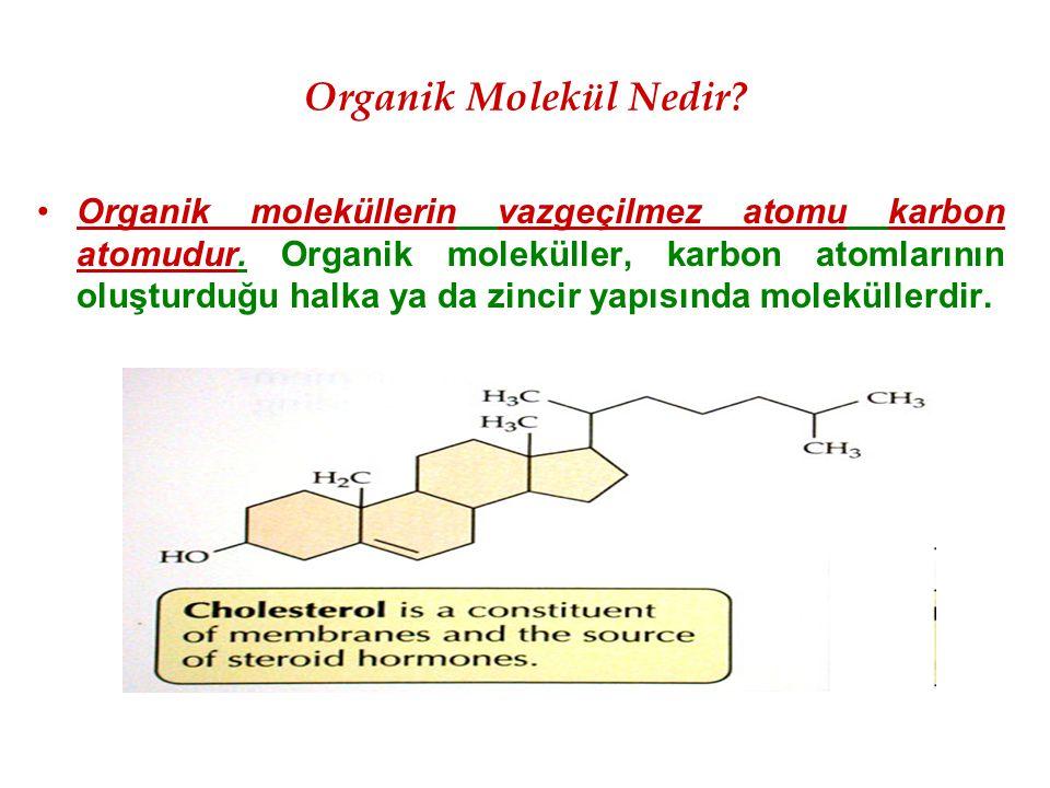 Organik Molekül Nedir