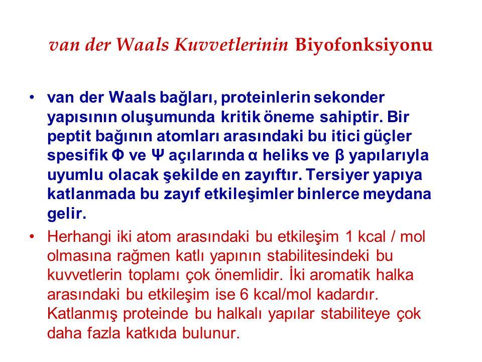 van der Waals Kuvvetlerinin Biyofonksiyonu