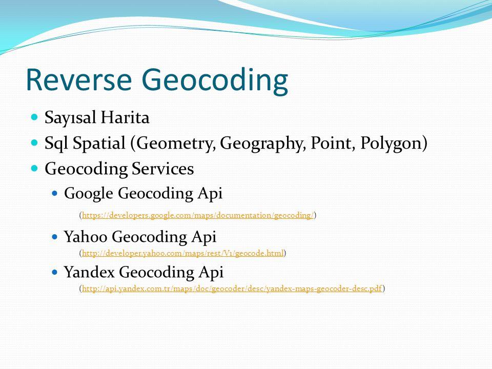 Reverse Geocoding Sayısal Harita