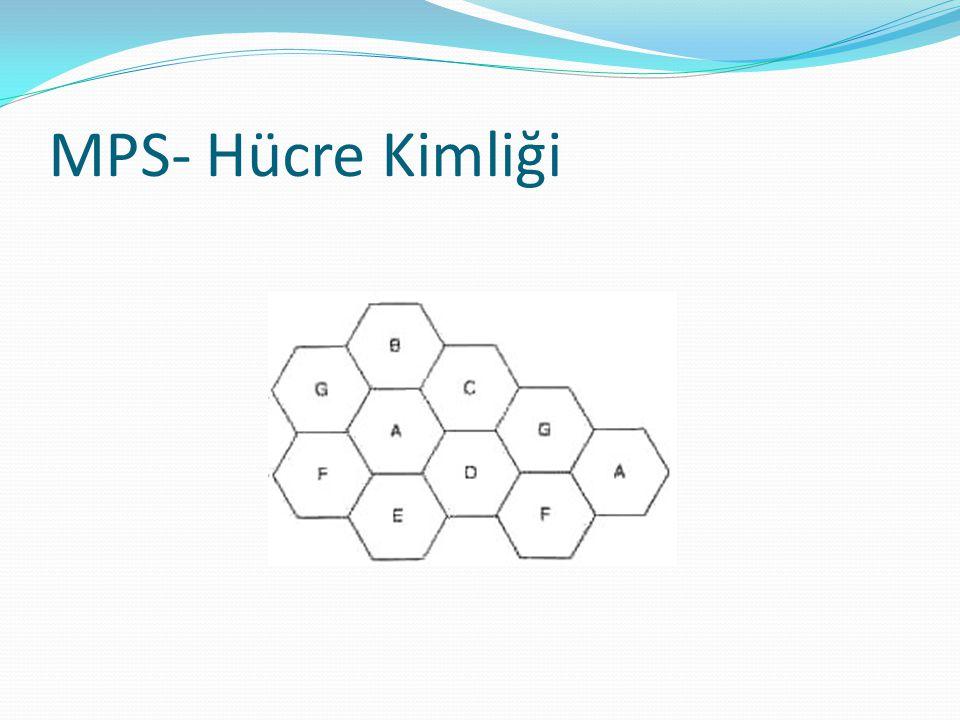 MPS- Hücre Kimliği