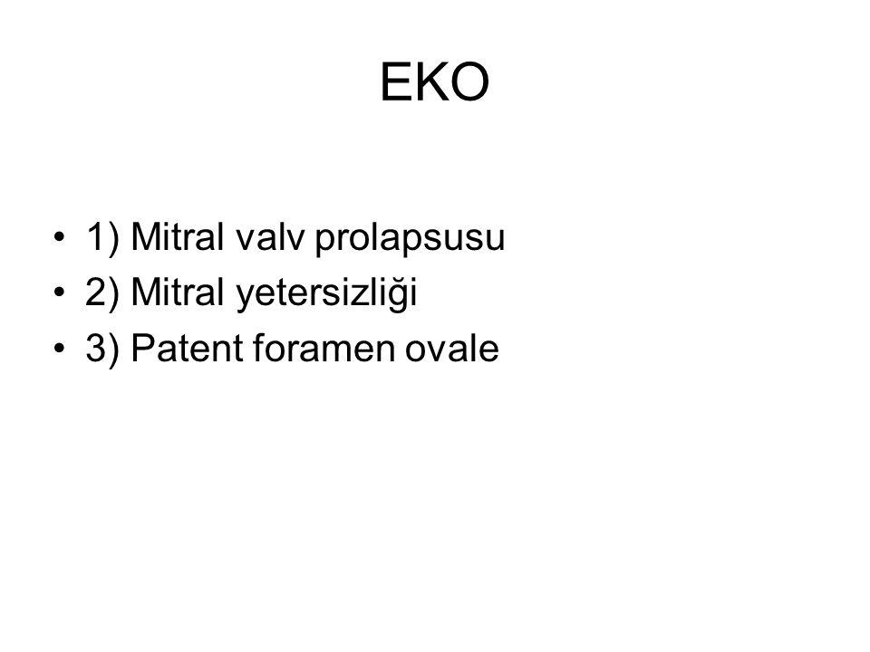 EKO 1) Mitral valv prolapsusu 2) Mitral yetersizliği