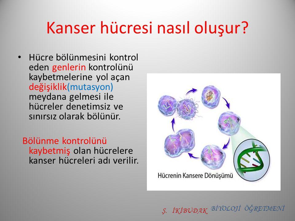 Kanser hücresi nasıl oluşur