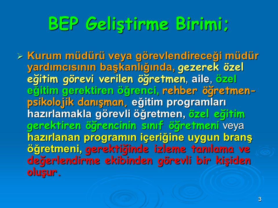 BEP Geliştirme Birimi;