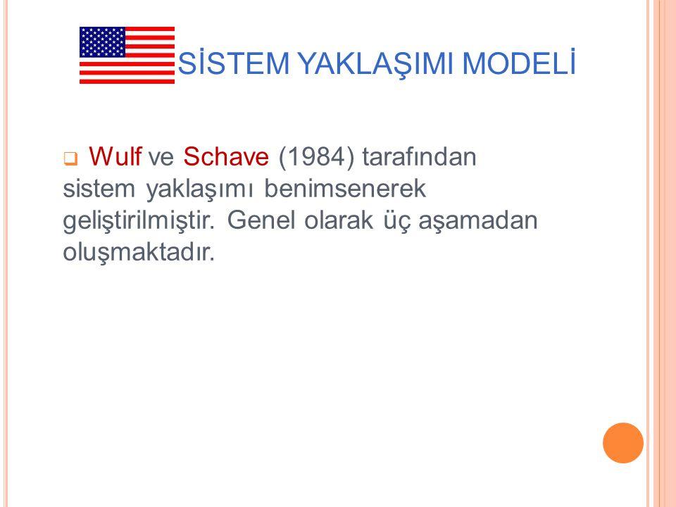 ABD: SİSTEM YAKLAŞIMI MODELİ