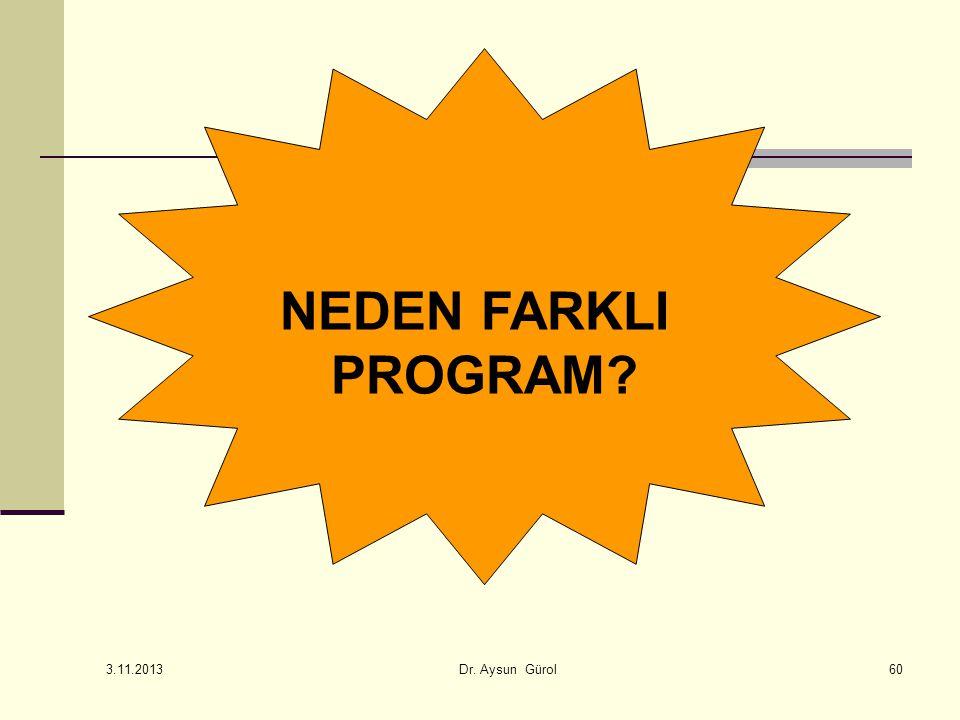 NEDEN FARKLI PROGRAM 3.11.2013 Dr. Aysun Gürol