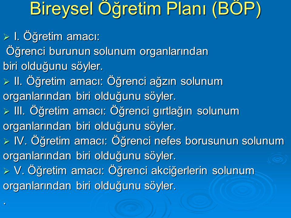 Bireysel Öğretim Planı (BÖP)