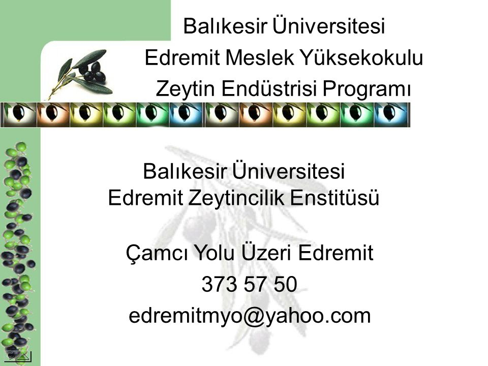 Balıkesir Üniversitesi Edremit Zeytincilik Enstitüsü