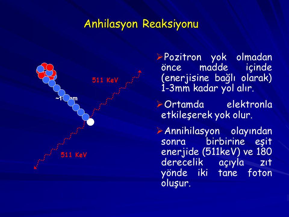 Anhilasyon Reaksiyonu