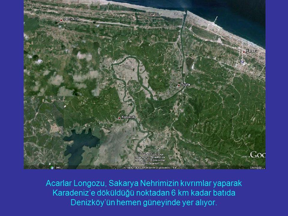 Acarlar Longozu, Sakarya Nehrimizin kıvrımlar yaparak Karadeniz'e döküldüğü noktadan 6 km kadar batıda Denizköy'ün hemen güneyinde yer alıyor.