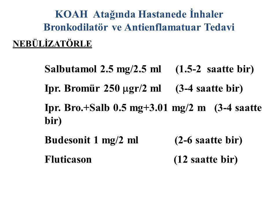 Salbutamol 2.5 mg/2.5 ml (1.5-2 saatte bir)