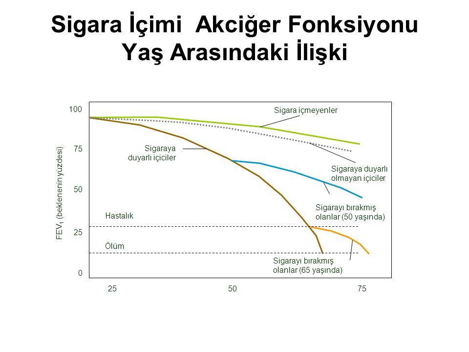 Sigara İçimi Akciğer Fonksiyonu Yaş Arasındaki İlişki