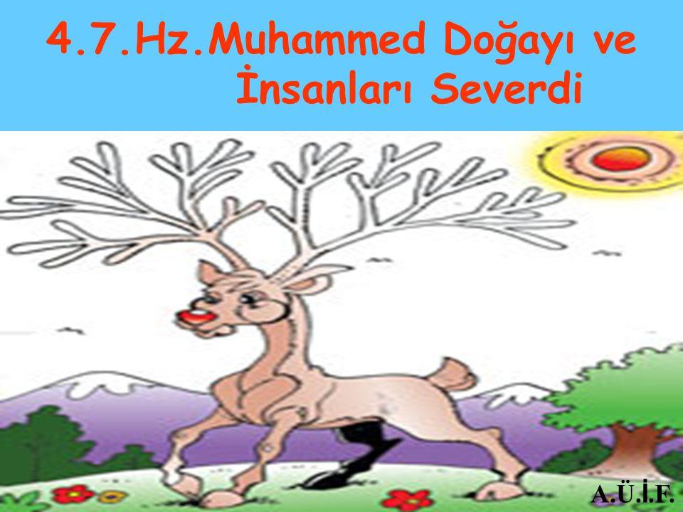 4.7.Hz.Muhammed Doğayı ve İnsanları Severdi