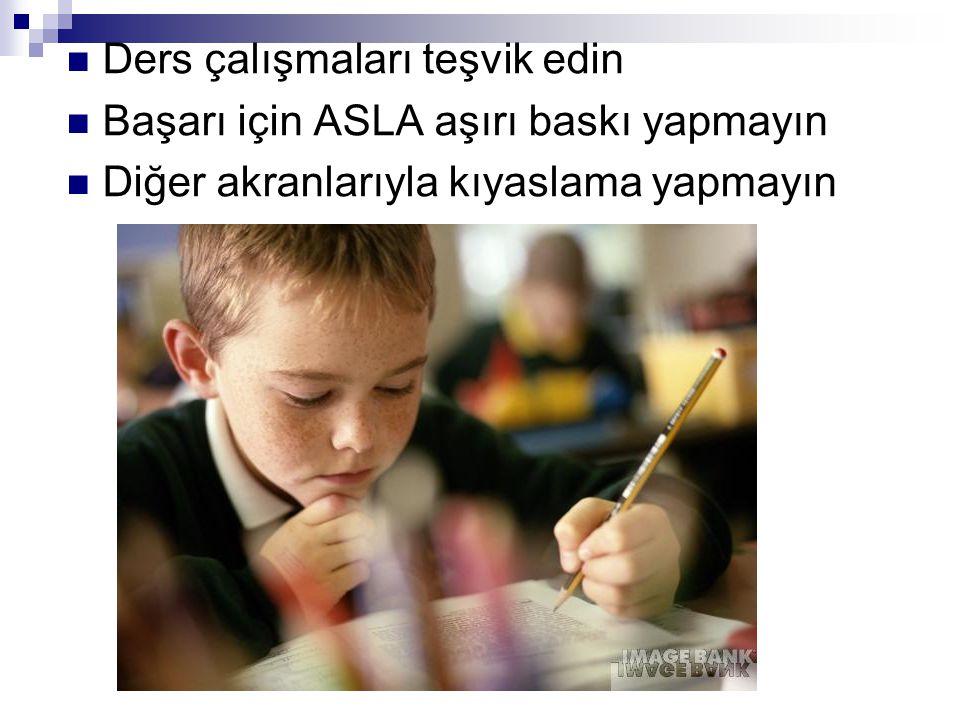 Ders çalışmaları teşvik edin Başarı için ASLA aşırı baskı yapmayın