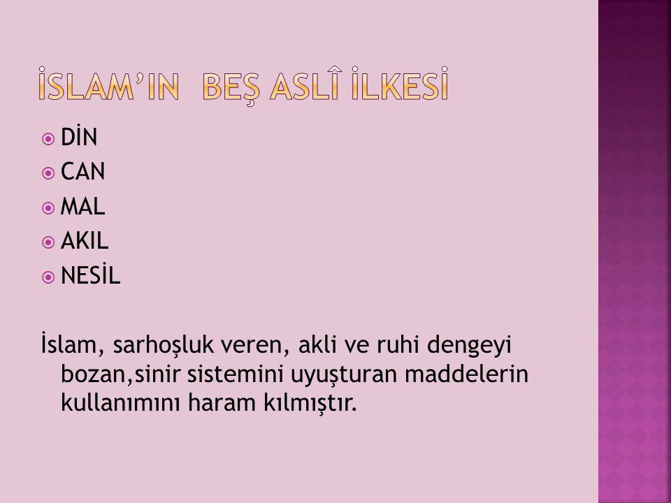 İSLAM'IN BEŞ ASLî İLKESİ