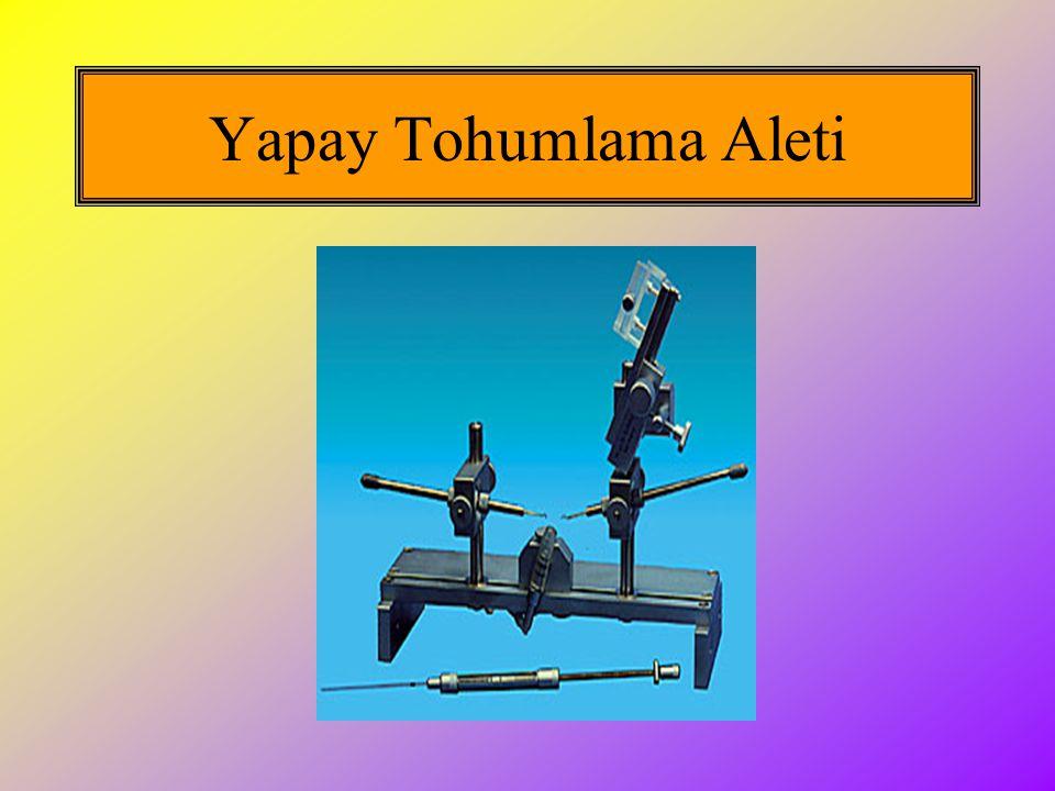 Yapay Tohumlama Aleti