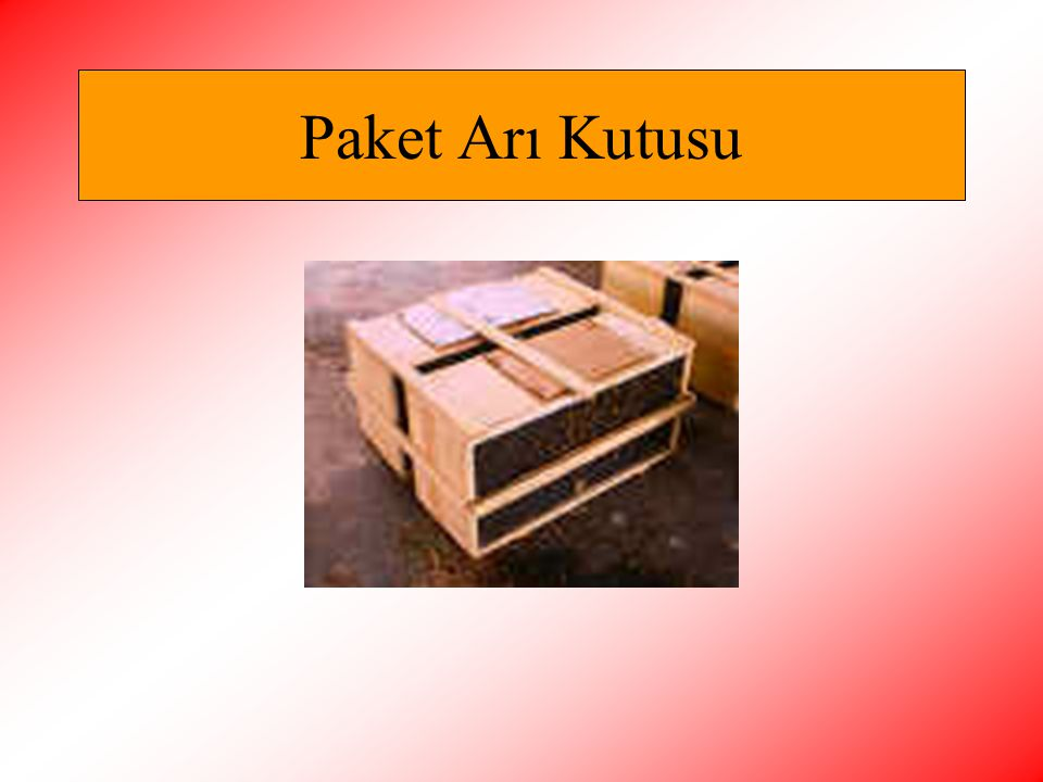 Paket Arı Kutusu