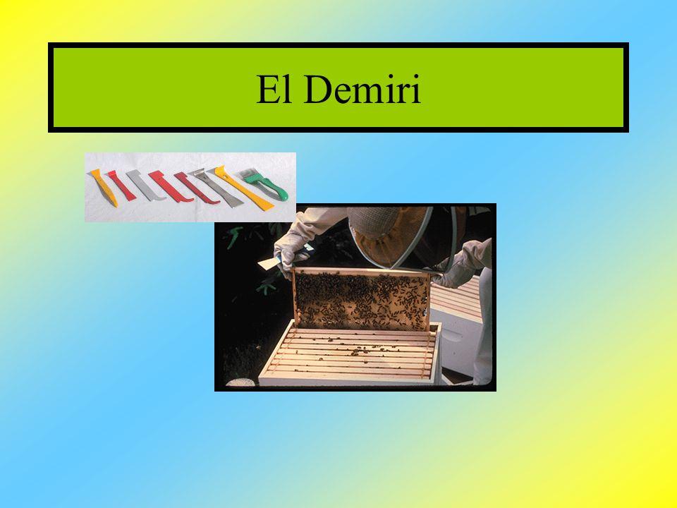 El Demiri