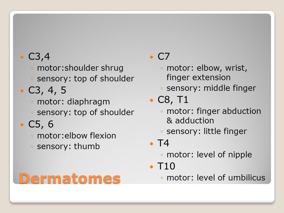 Dermatomes C3,4 C3, 4, 5 C5, 6 C7 C8, T1 T4 T10 motor:shoulder shrug