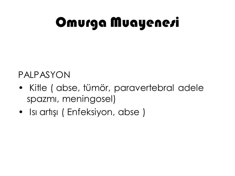 Omurga Muayenesi PALPASYON