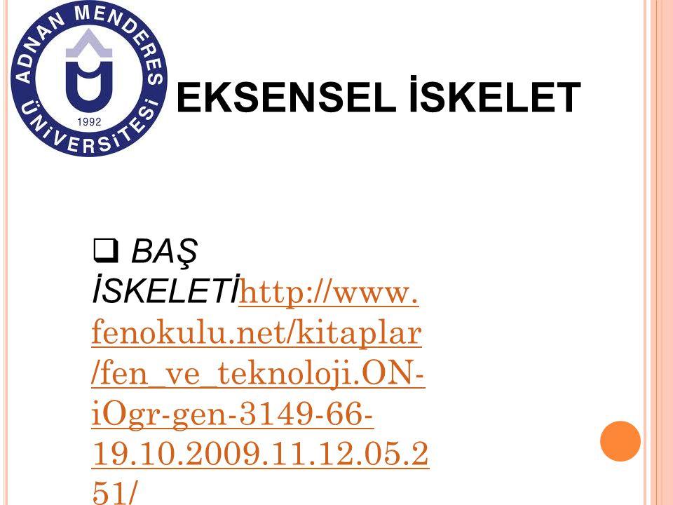 EKSENSEL İSKELET BAŞ İSKELETİhttp://www.fenokulu.net/kitaplar/fen_ve_teknoloji.ON-iOgr-gen-3149-66-19.10.2009.11.12.05.251/