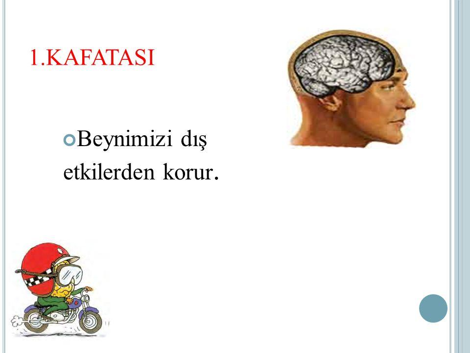Beynimizi dış etkilerden korur.