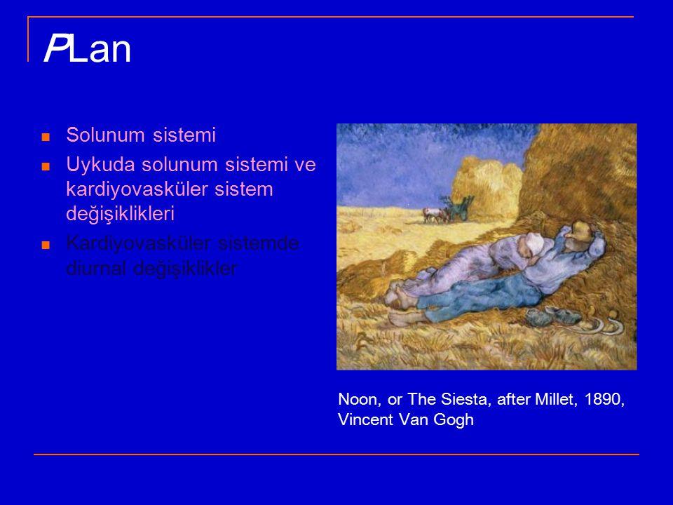 PLan Solunum sistemi. Uykuda solunum sistemi ve kardiyovasküler sistem değişiklikleri. Kardiyovasküler sistemde diurnal değişiklikler.