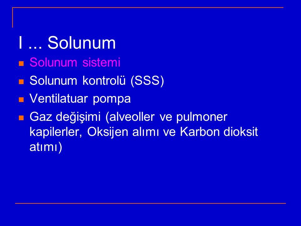 I ... Solunum Solunum sistemi Solunum kontrolü (SSS) Ventilatuar pompa