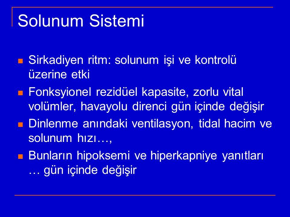Solunum Sistemi Sirkadiyen ritm: solunum işi ve kontrolü üzerine etki