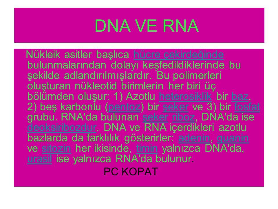 DNA VE RNA