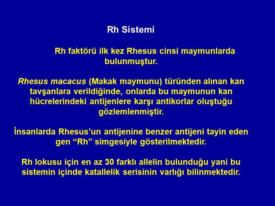 Rh faktörü ilk kez Rhesus cinsi maymunlarda bulunmuştur.