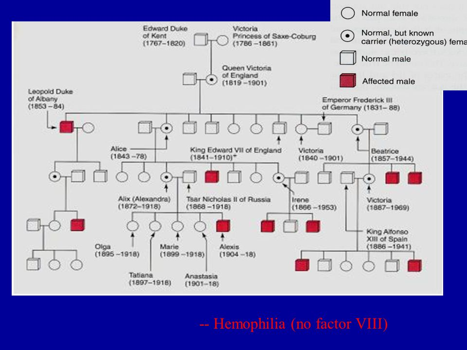 -- Hemophilia (no factor VIII)