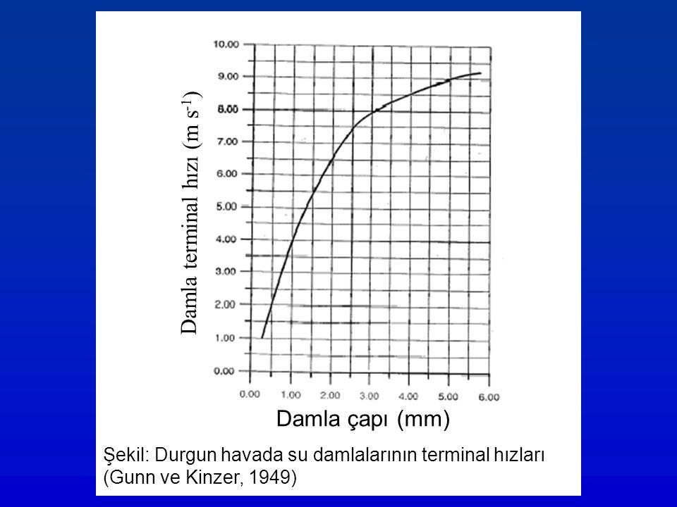 Damla terminal hızı (m s-1)
