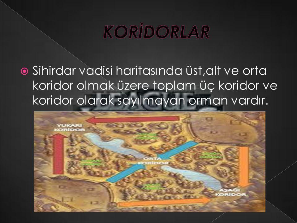 KORİDORLAR Sihirdar vadisi haritasında üst,alt ve orta koridor olmak üzere toplam üç koridor ve koridor olarak sayılmayan orman vardır.