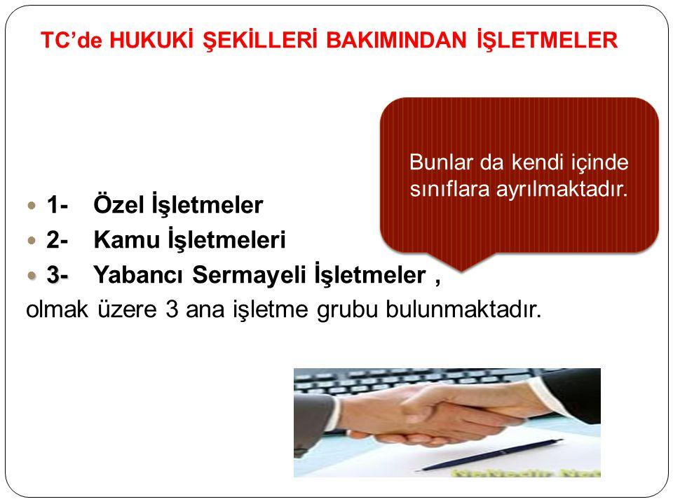 TC'de HUKUKİ ŞEKİLLERİ BAKIMINDAN İŞLETMELER