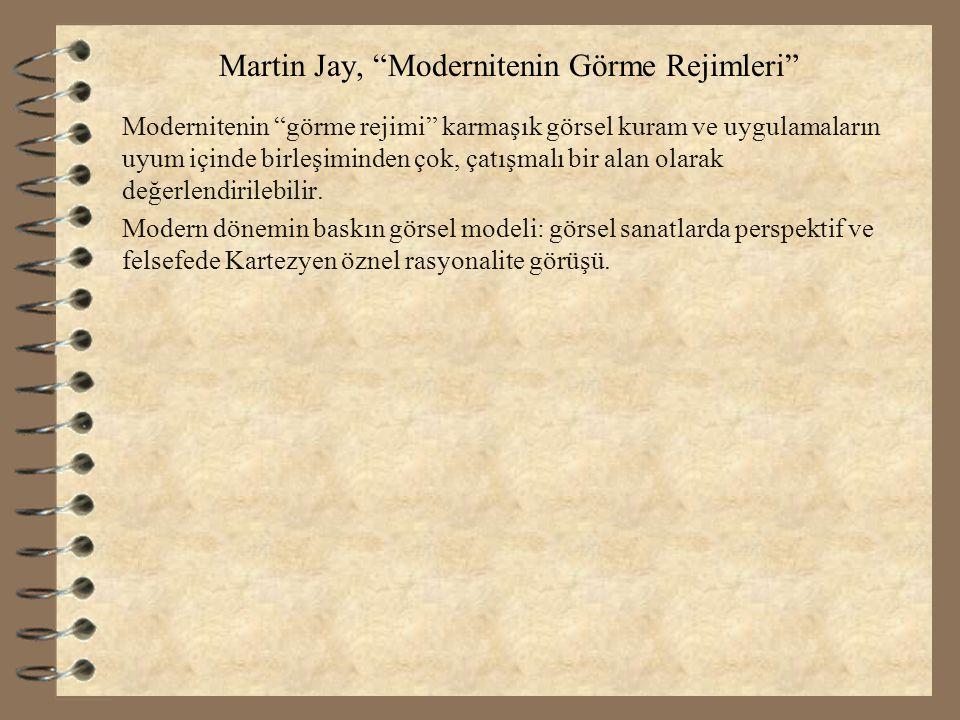 Martin Jay, Modernitenin Görme Rejimleri