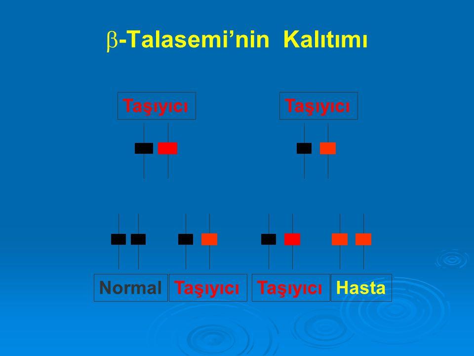 -Talasemi'nin Kalıtımı