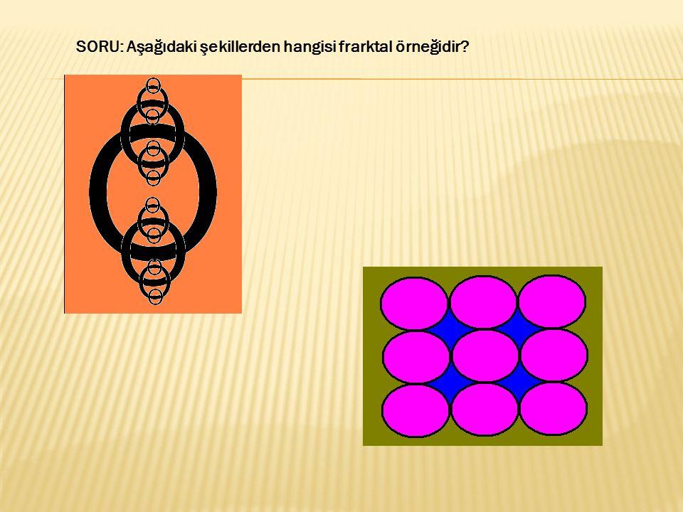 SORU: Aşağıdaki şekillerden hangisi frarktal örneğidir