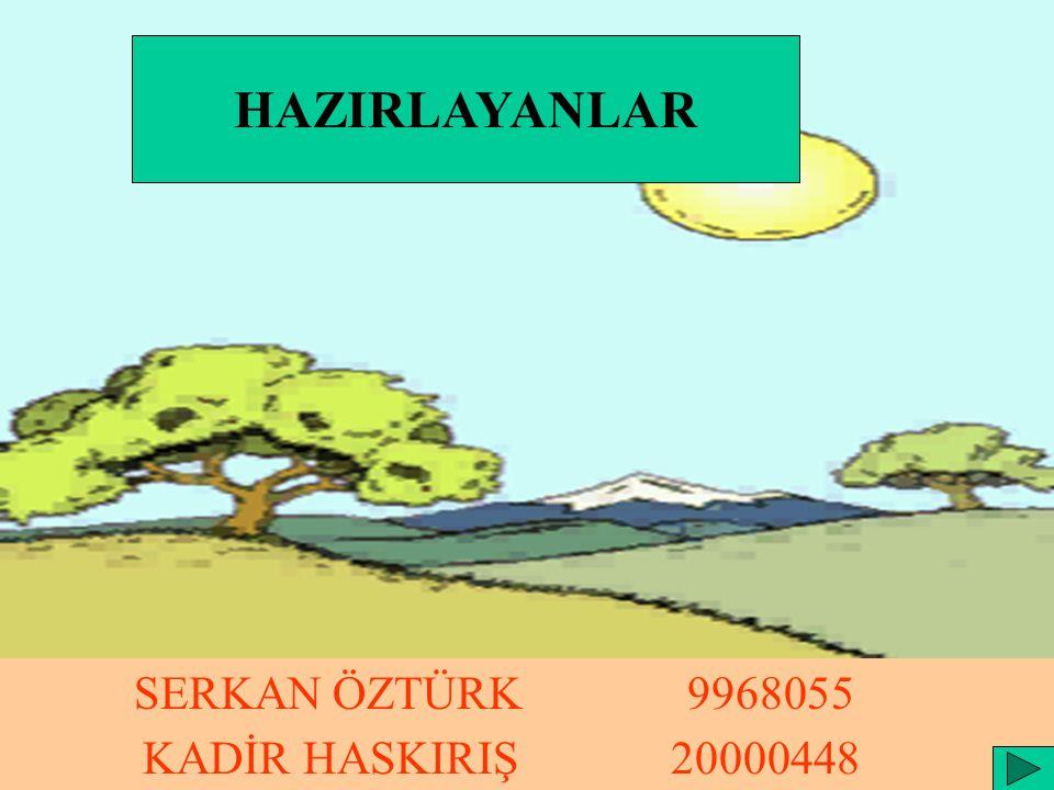 HAZIRLAYANLAR SERKAN ÖZTÜRK 9968055 KADİR HASKIRIŞ 20000448