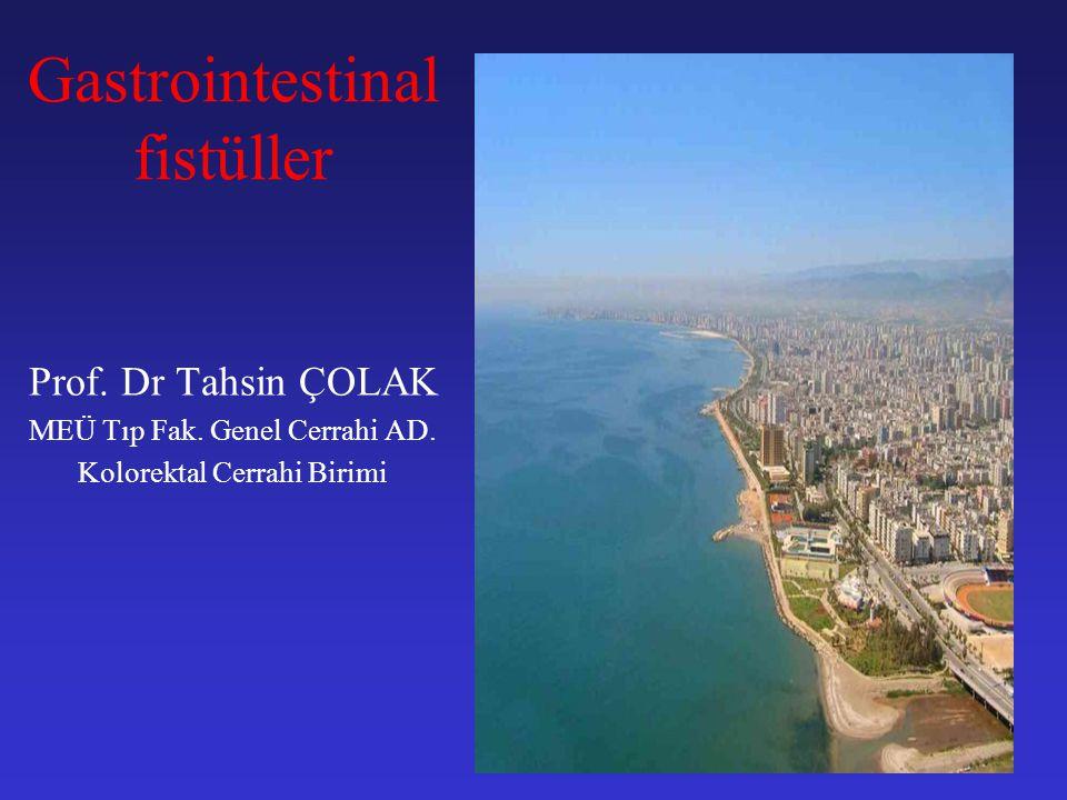 Gastrointestinal fistüller