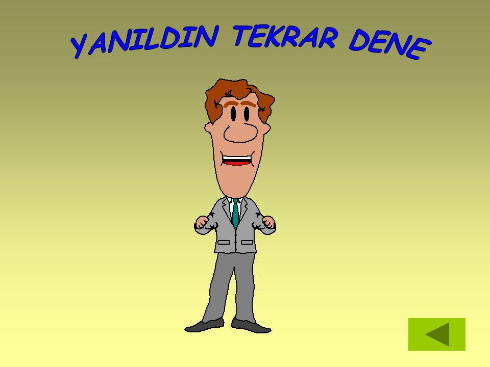 YANILDIN TEKRAR DENE