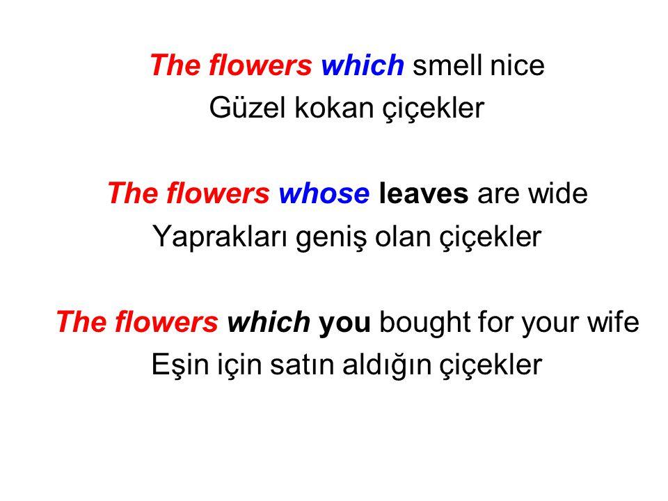 The flowers which smell nice Güzel kokan çiçekler