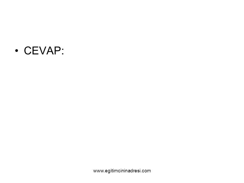 CEVAP: www.egitimcininadresi.com