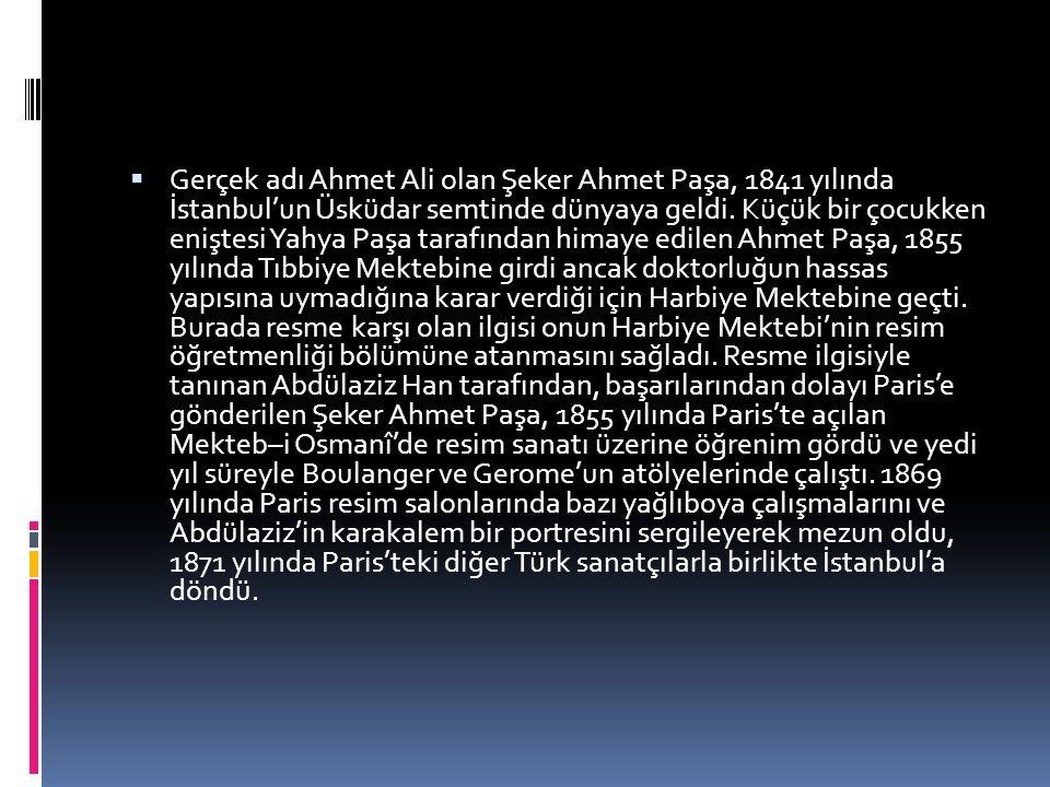 Gerçek adı Ahmet Ali olan Şeker Ahmet Paşa, 1841 yılında İstanbul'un Üsküdar semtinde dünyaya geldi.