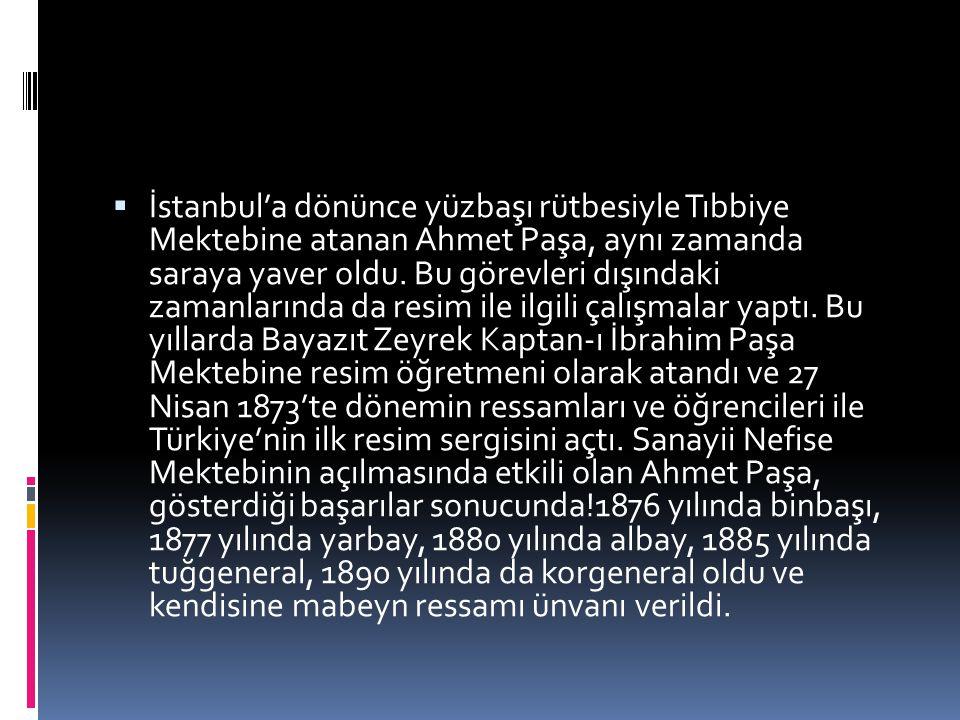İstanbul'a dönünce yüzbaşı rütbesiyle Tıbbiye Mektebine atanan Ahmet Paşa, aynı zamanda saraya yaver oldu.